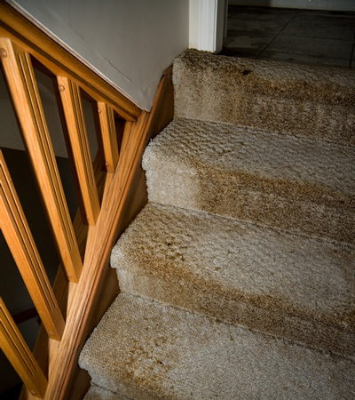 Carpet on stairs damaged by water flooding